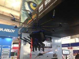 Skunk drone foto