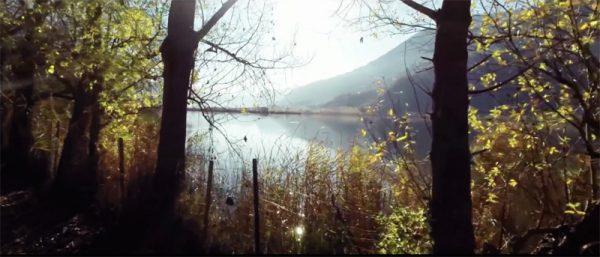 Compilatievideo2