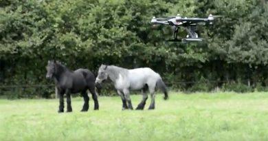 Yuneec Q500 spoort paardenbeul op