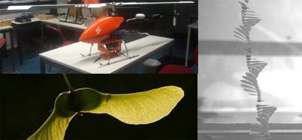 Autorotation drone